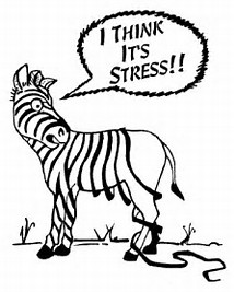 Small Business Stress Management