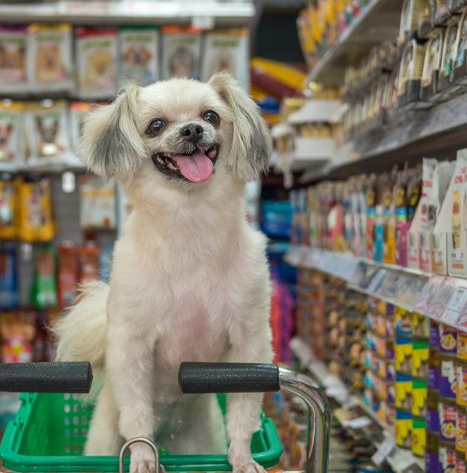 Reinventing Retail: 7 Ways to Ensure Your Pet Store Competes and Wins
